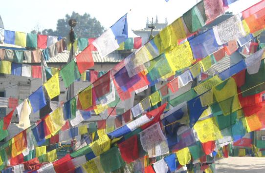 5 Rollen Nepal Traditionelle Tibet Gebetsfahnen 5x25 Windpferd Lungta